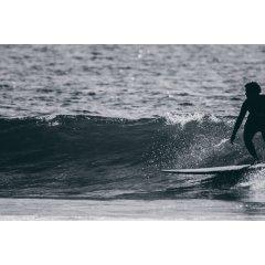 Malibu Polyester